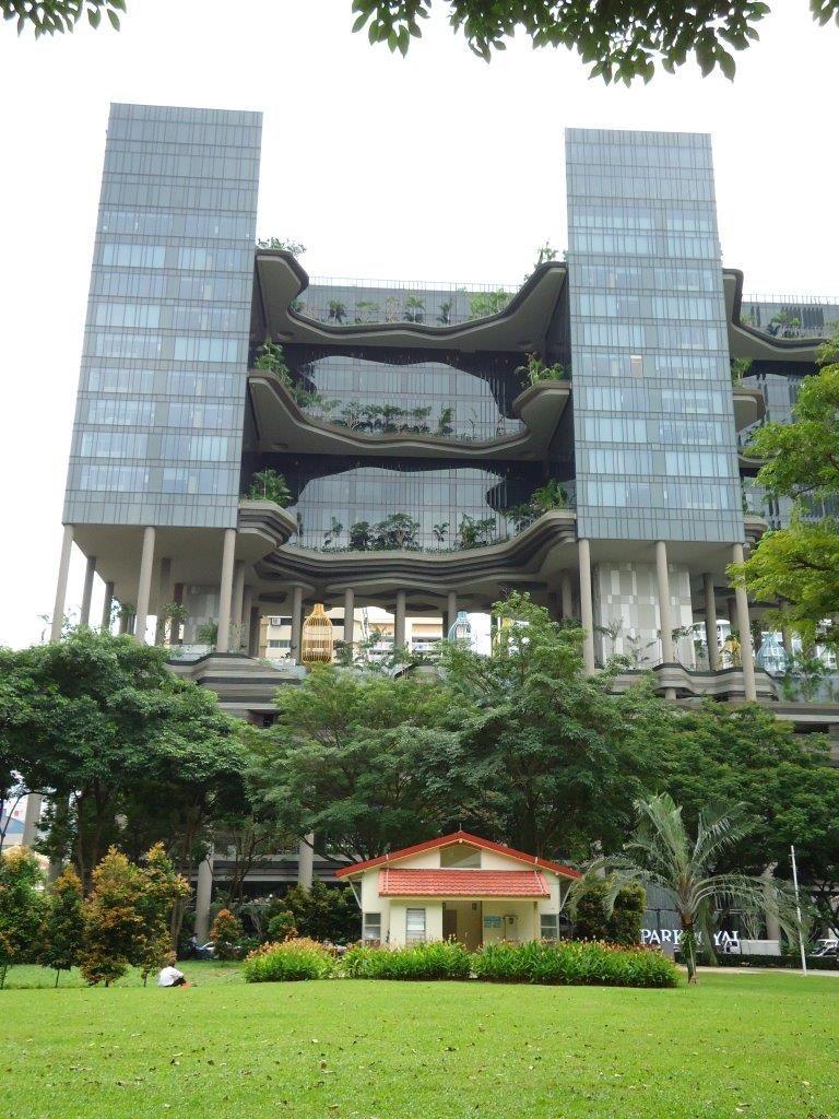 J1 Singapour