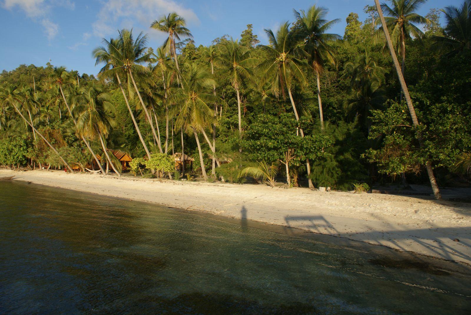 Sulawesi - Iles Togian / 4