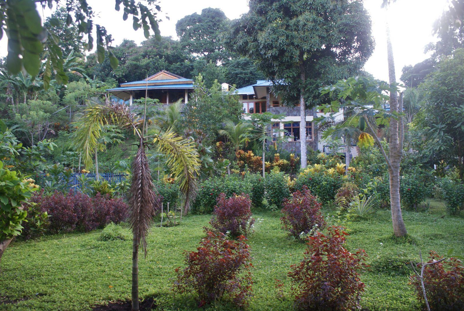 Sulawesi - Iles de Bunaken / 5