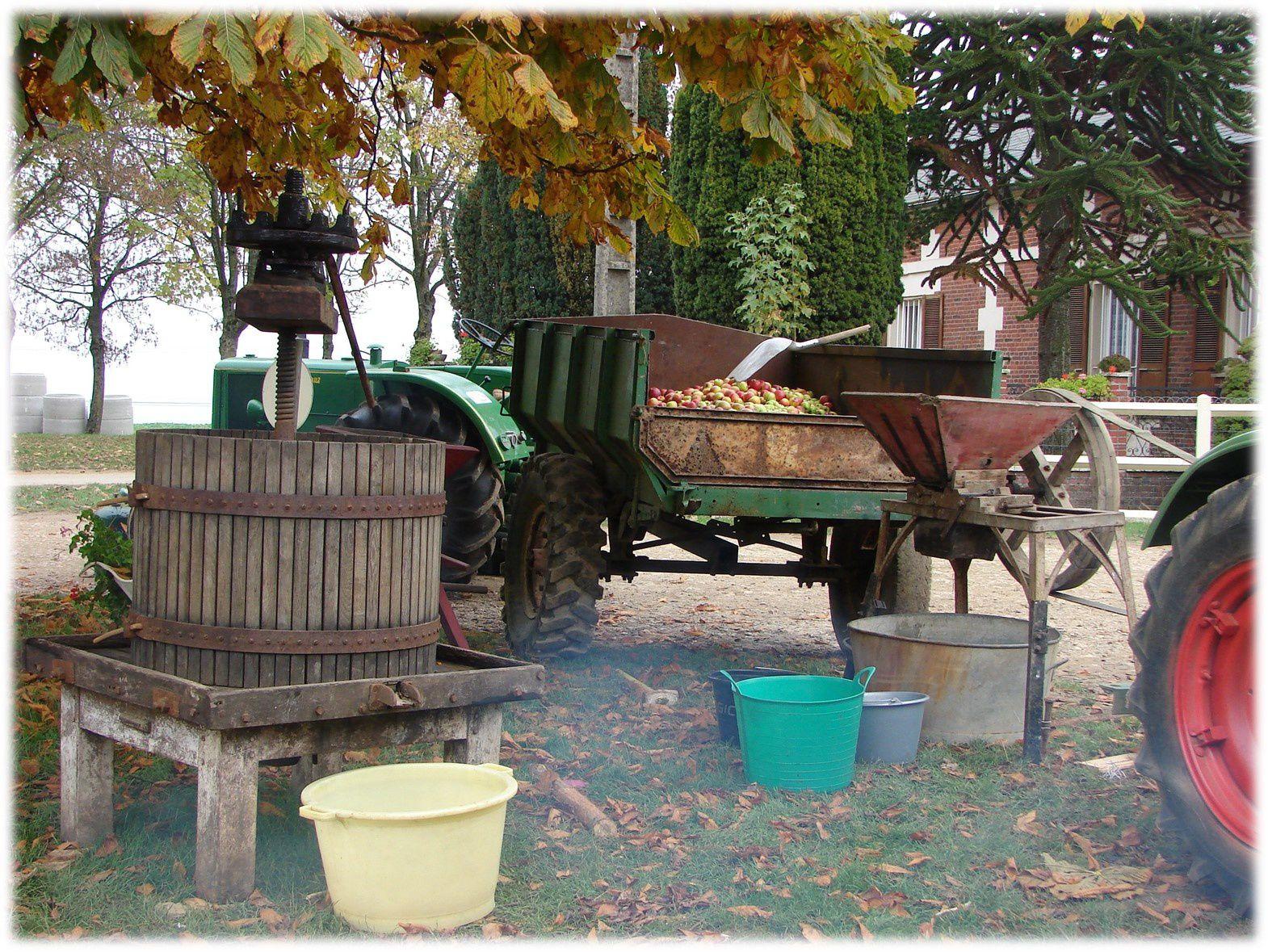 Fête de la Pomme et du Cheval le 6 octobre 2013 à Lachapelle Saint Pierre (60)