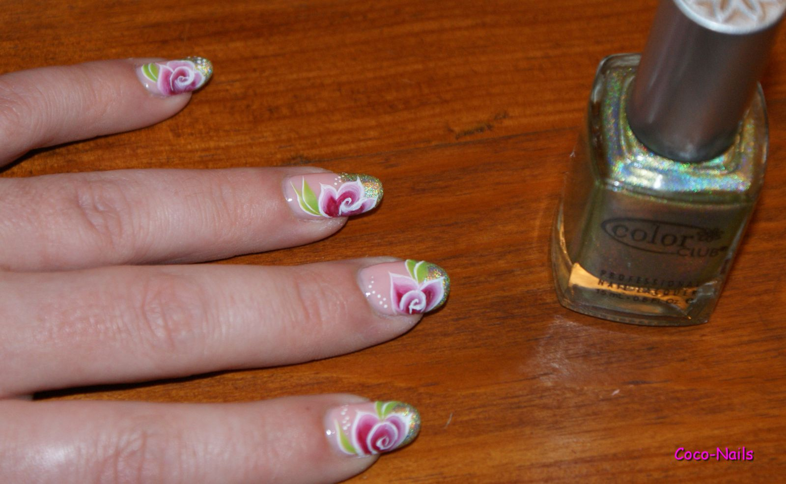 Roses en One Stroke sur french holo