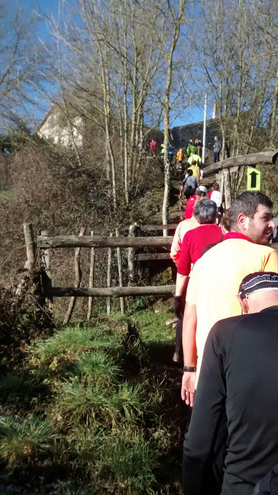 Trail du Val d'Egray édition 2015