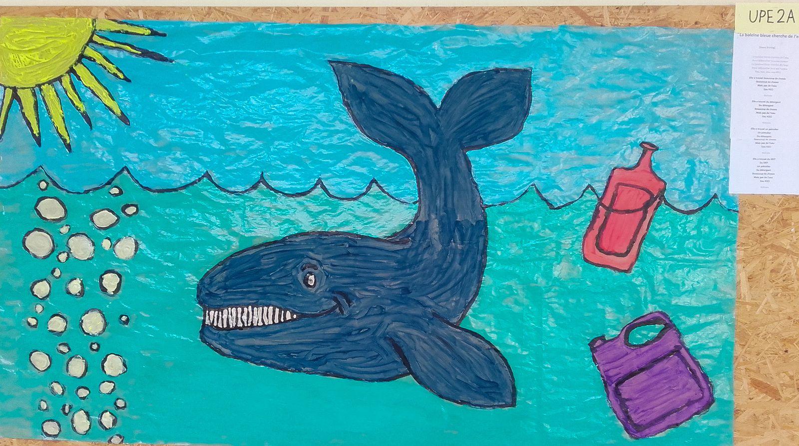 steve waring la baleine bleue