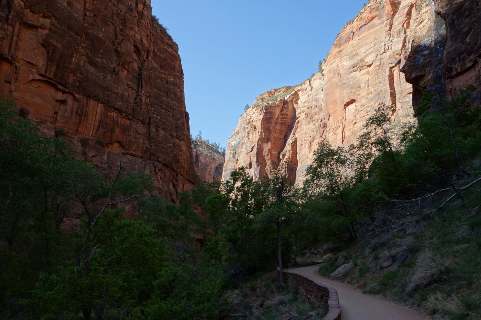 Day 6 : Zion National Park (The Narrows).