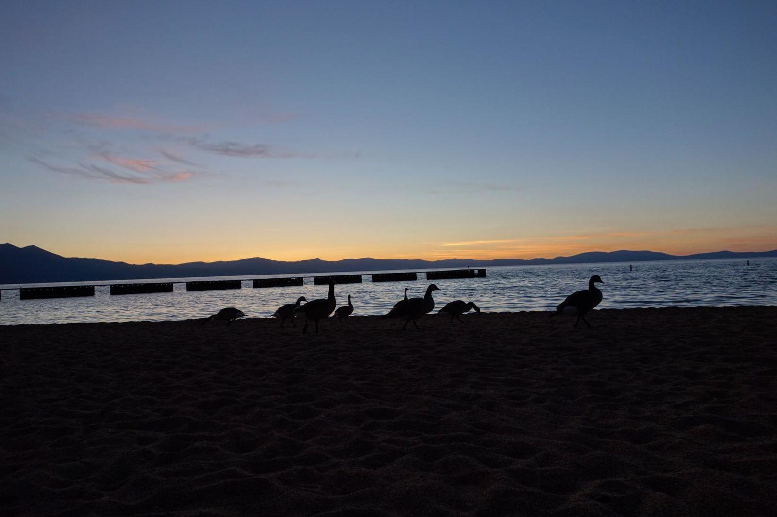 Week end au lac Tahoe.