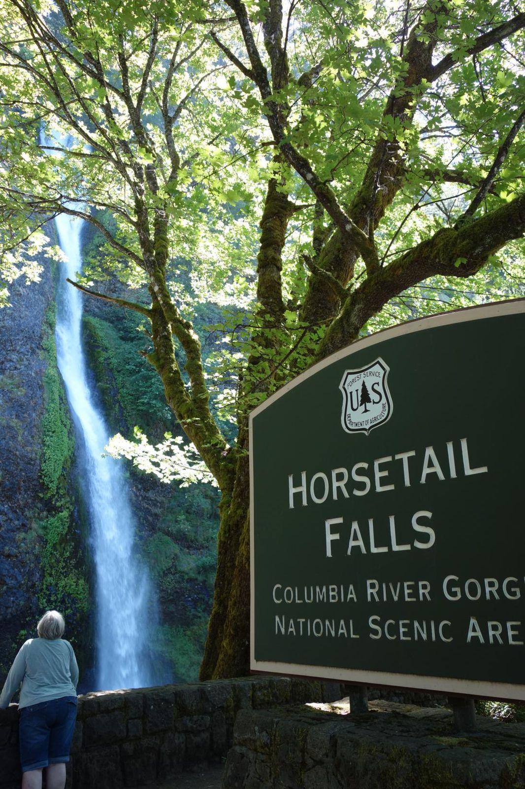 Gorges de la Colombia River, Oregon <3, pas trop trop moche