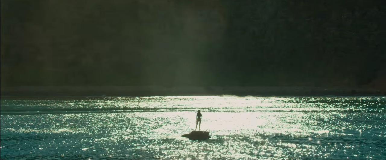 Seule au monde (Instinct de survie de Jaume Collet-Serra)