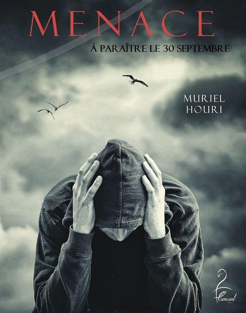 Thriller : MENACE - Muriel Houri - 252 pages - 15,00 € - Flamant Noir Editions.