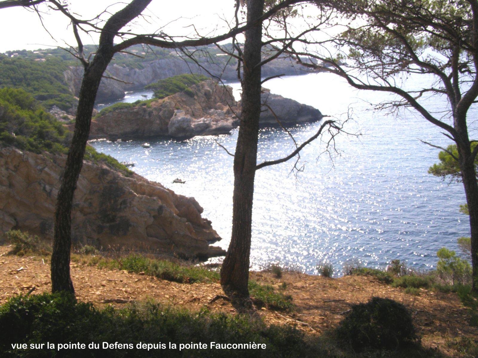 Port de la Ciotat - Parc du Mugel - Anse du Mugel...