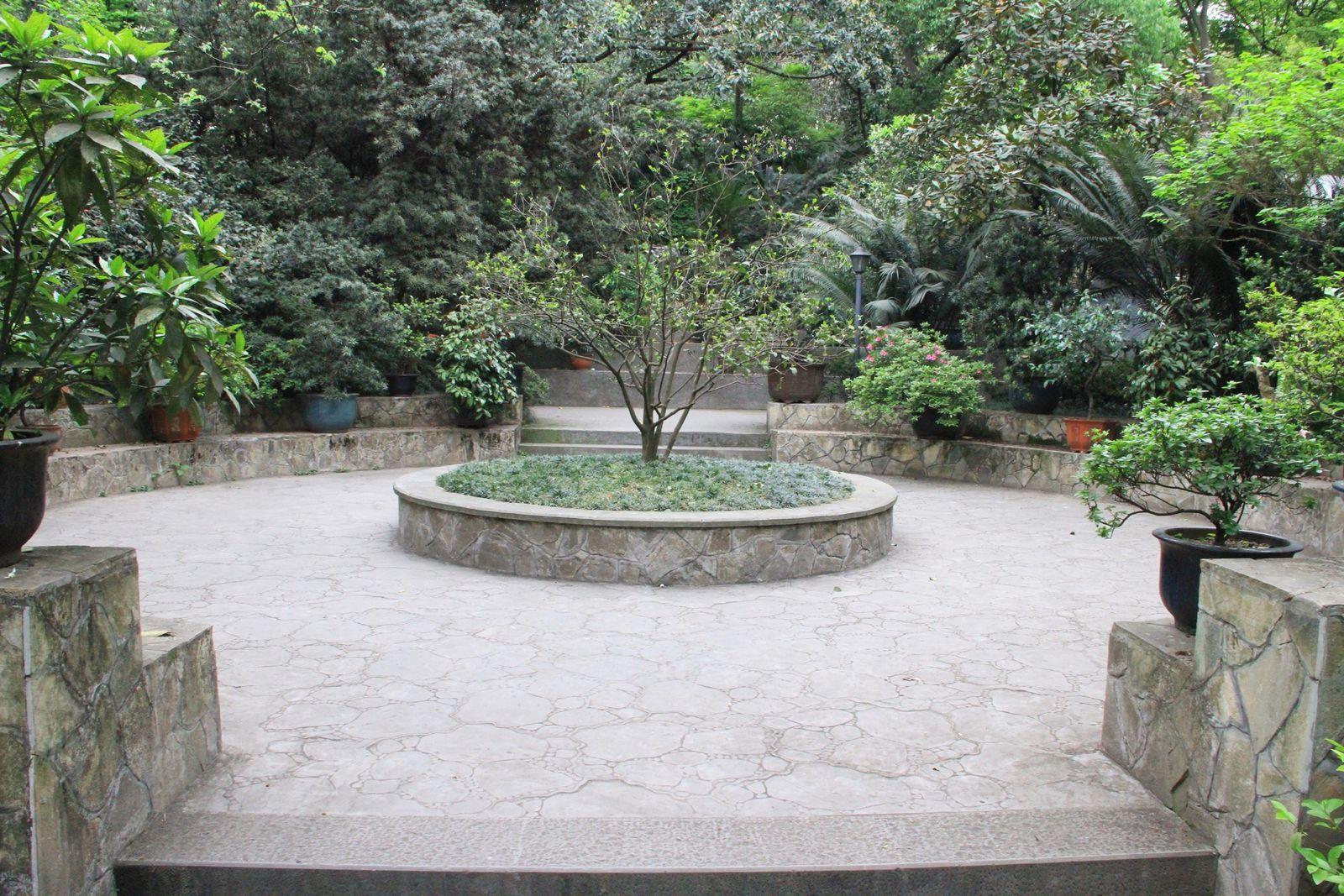 Dans les parcs de chongqing  : eling gongyuan (鹅领公园)