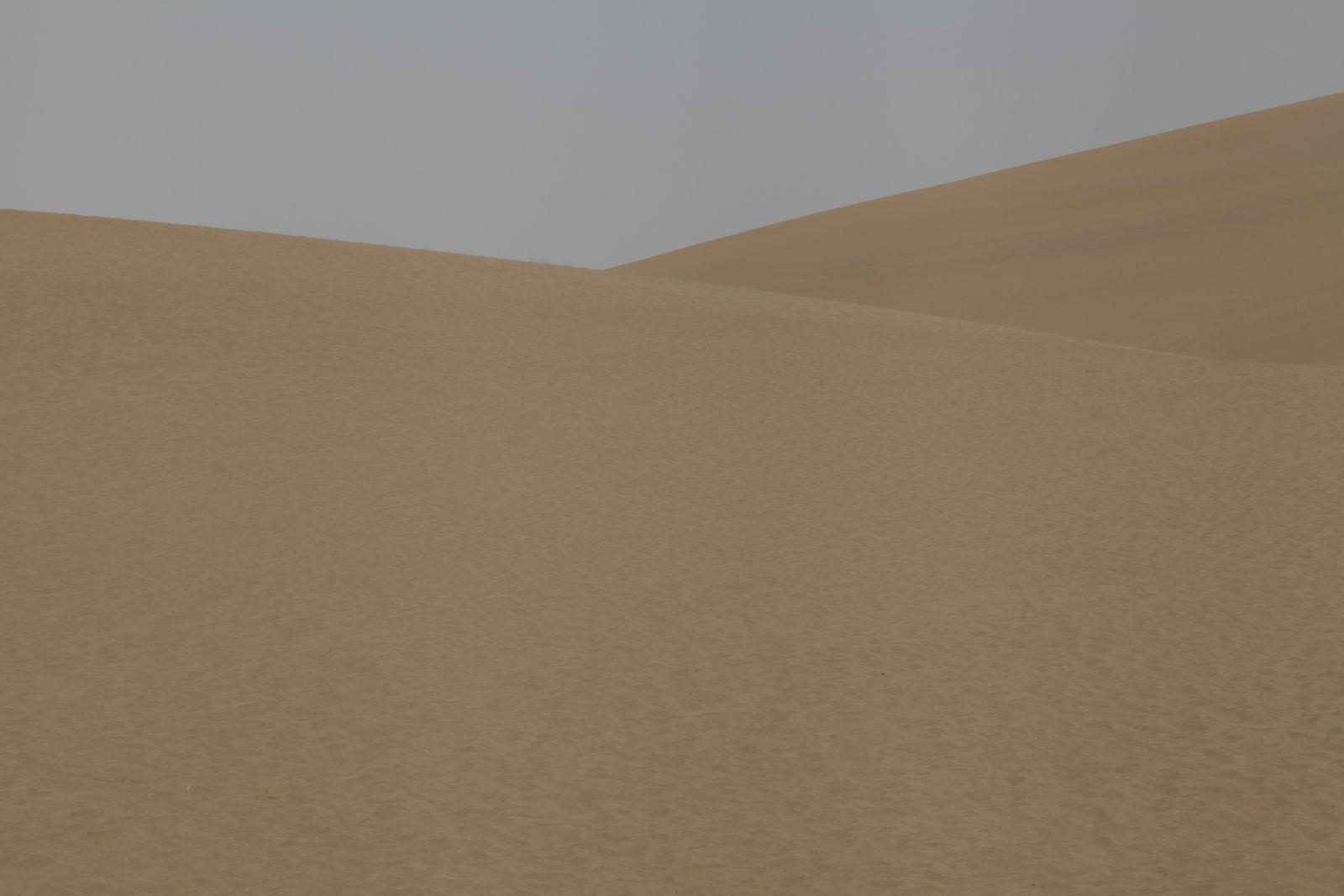 Les dunes de mingsha.