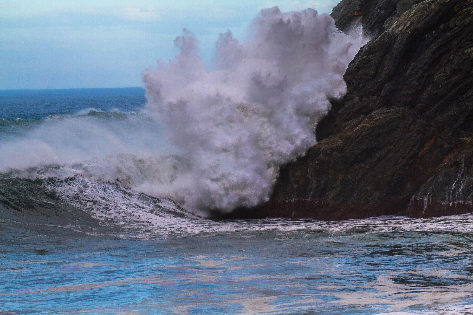 Canaries- Tenerife : Puerto de la Cruz - La Laguna