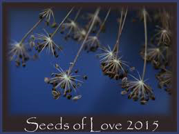 Seeds of love 2015...Merci Isabelle