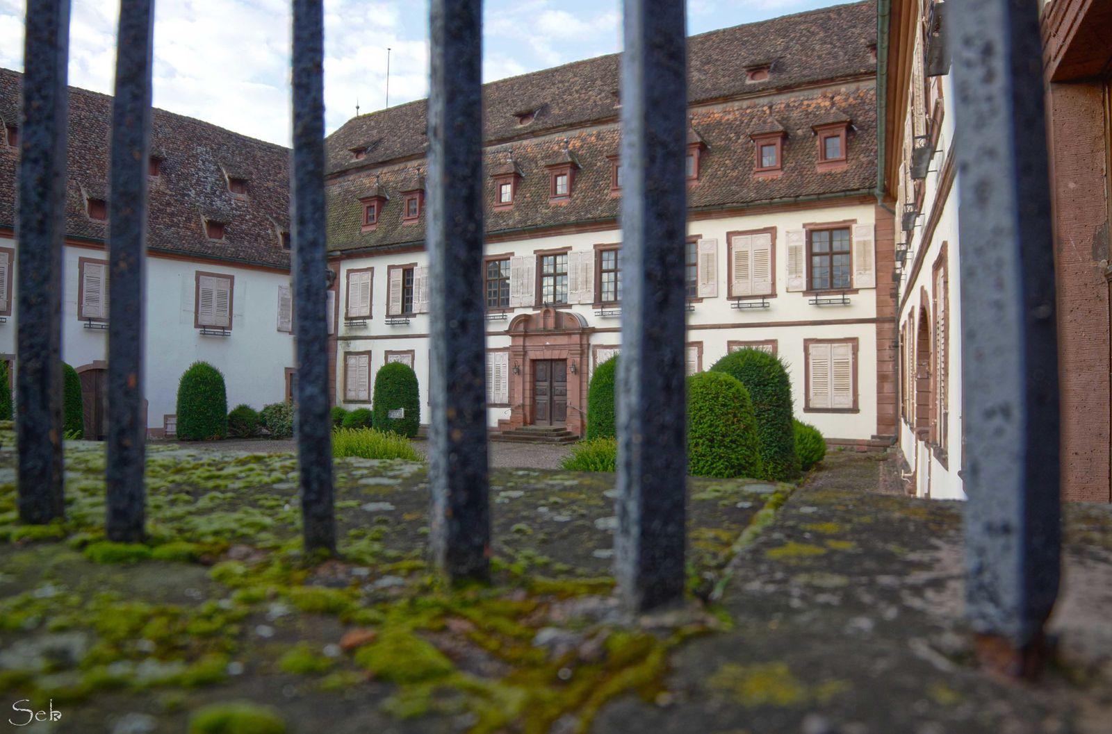 Vue du Palais Stanislas à travers les barreaux.