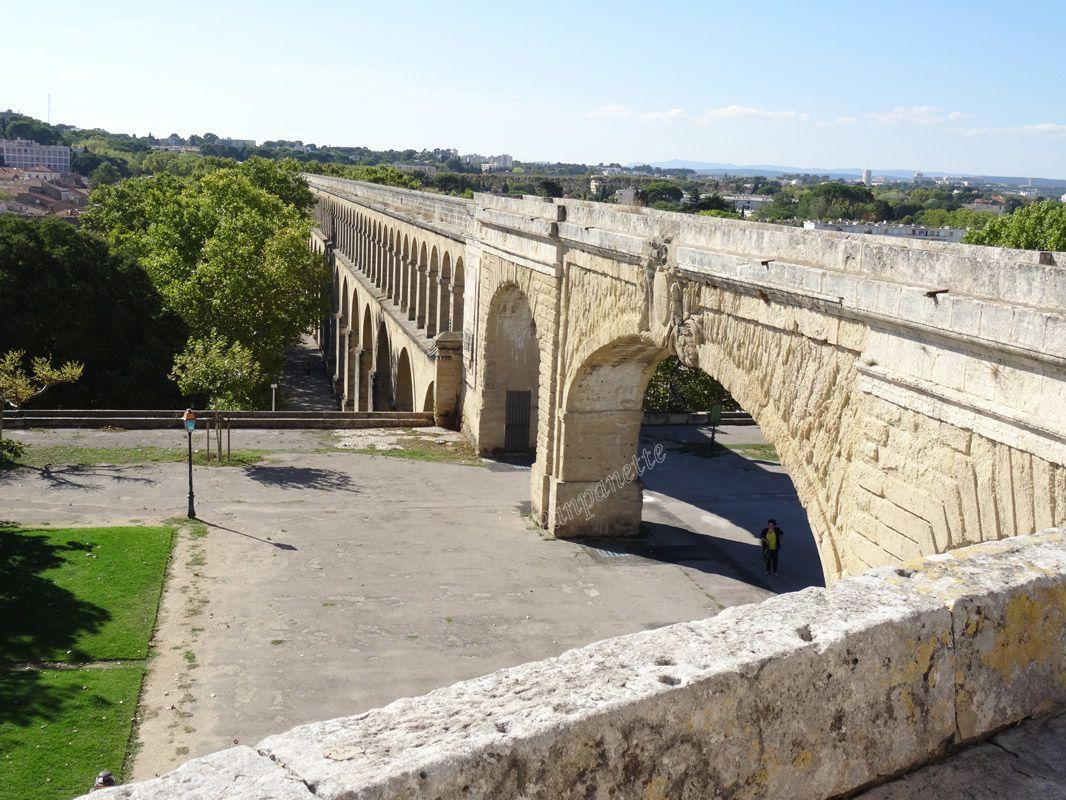 Découverte de Montpellier, suite