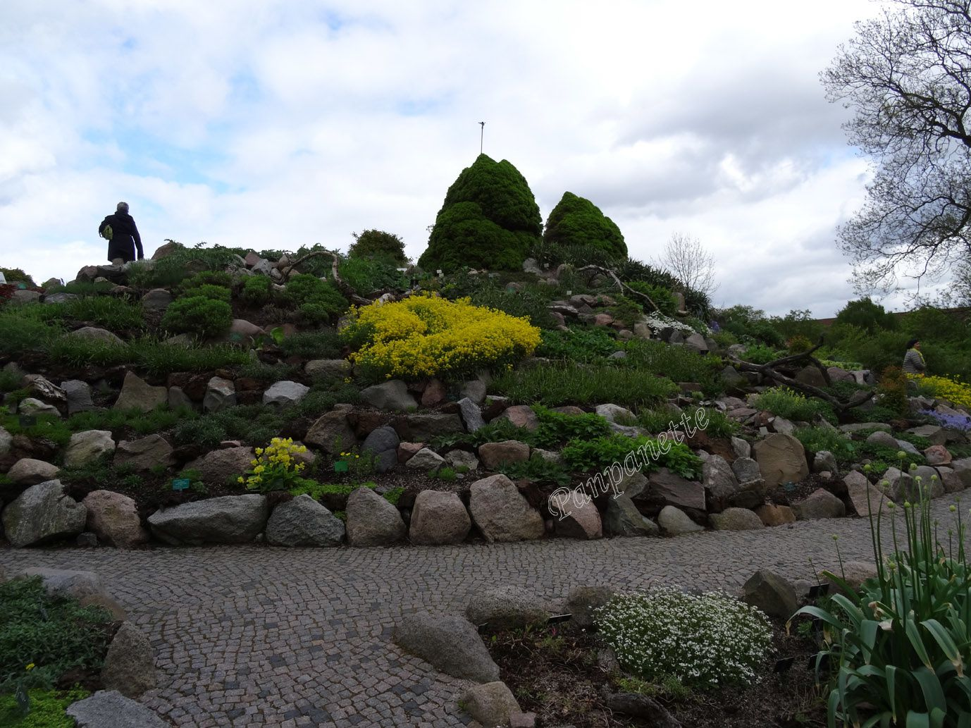 Danemark _5 Jardin botanique