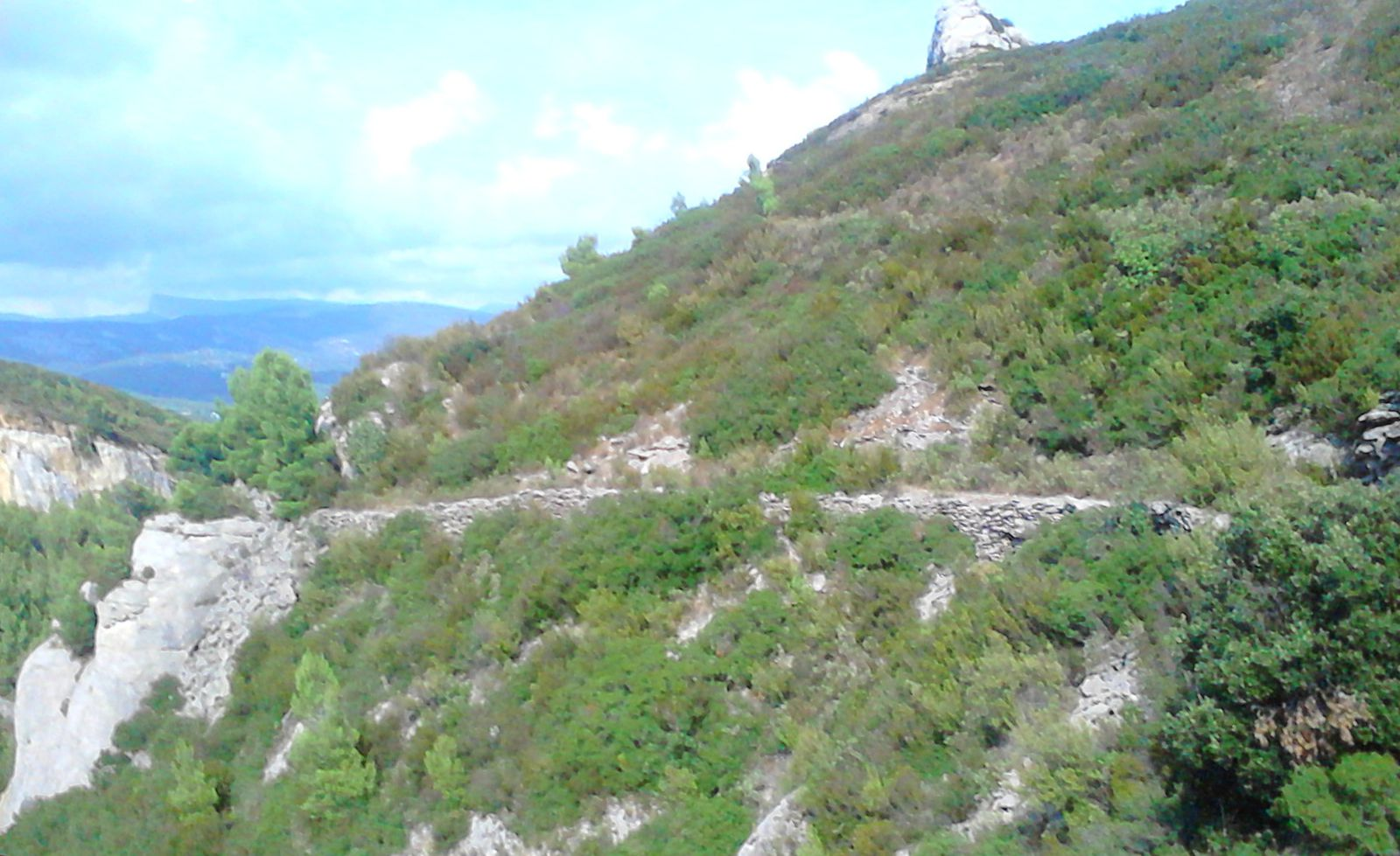 Dans les collines de la Fardeloup