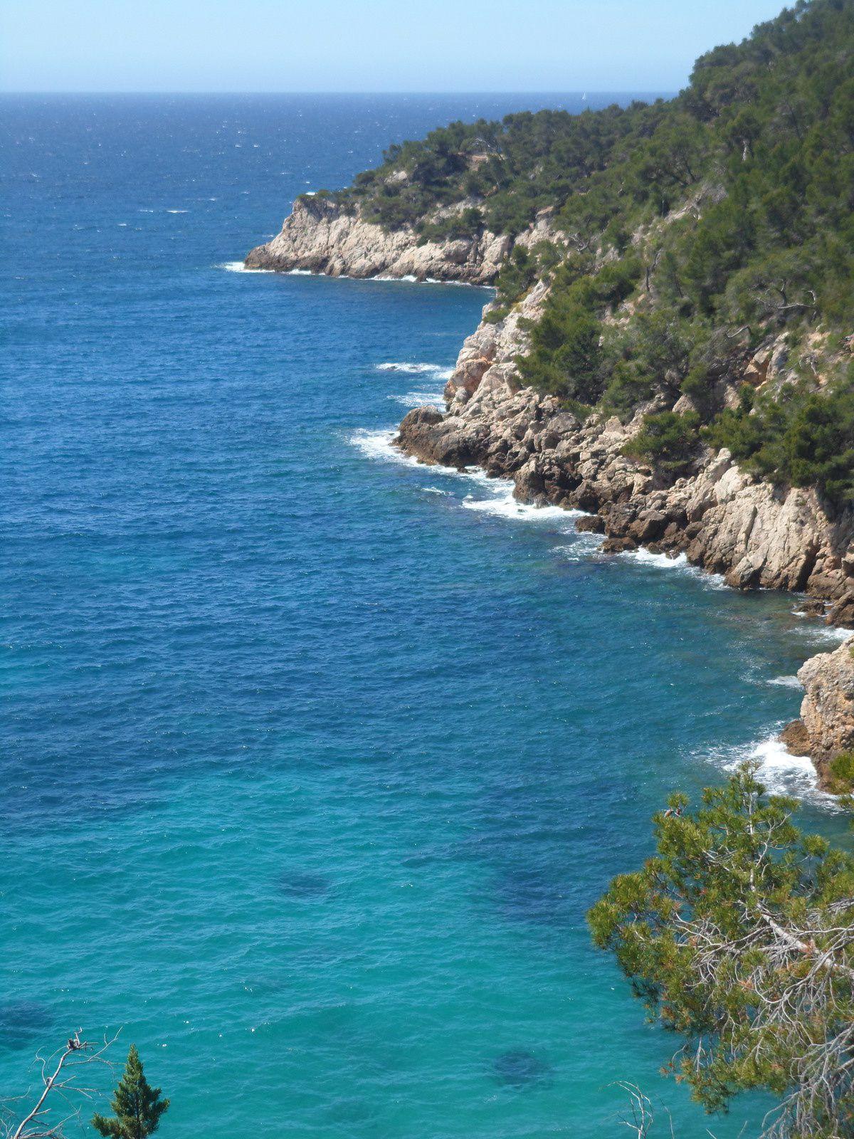 """L'île communément appelée """"le sous-marin"""" réserve naturelle de poissons"""