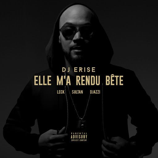 DJ Erise    Elle M'a Rendu Bete Feat. Leck, Sultan &amp&#x3B; Djazzi    (Single)