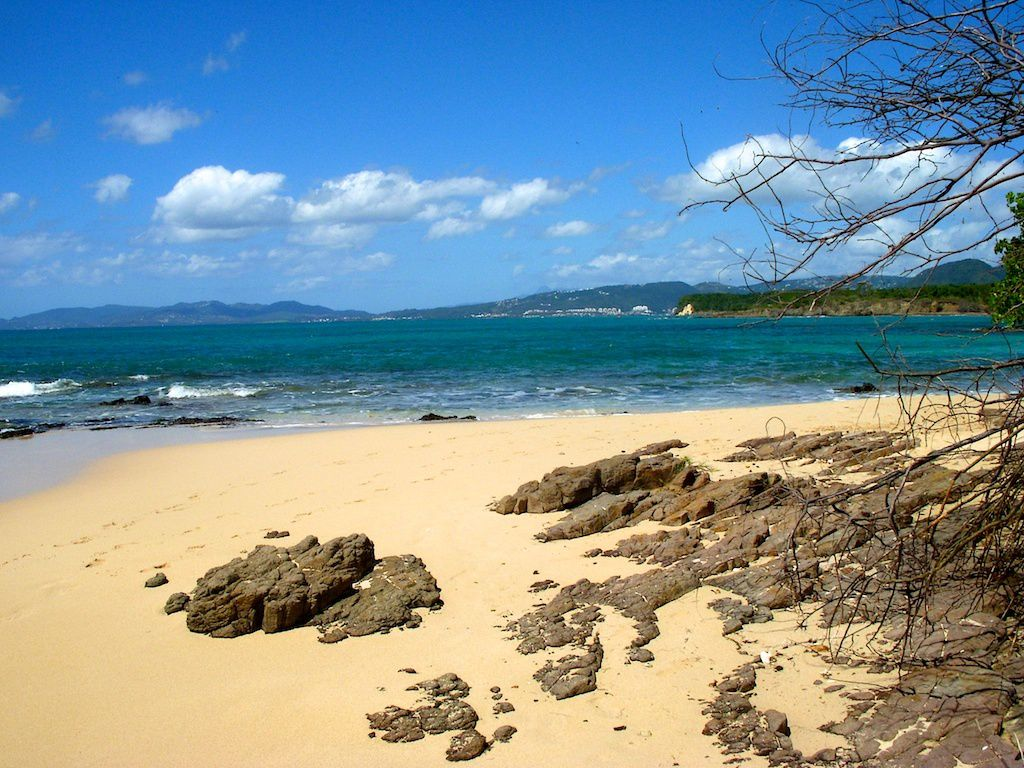 Martinique-la plage des salines.