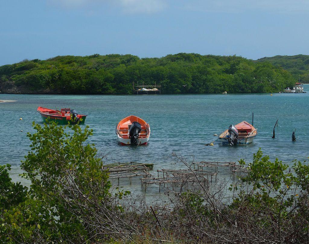Martinique.