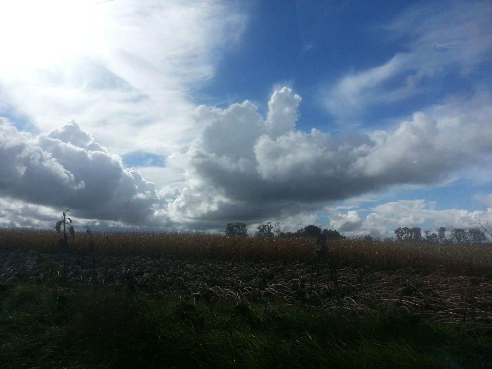 photos prisent avec mon téléphone ce weekend en Charentes maritimes (le 29/09/13 )