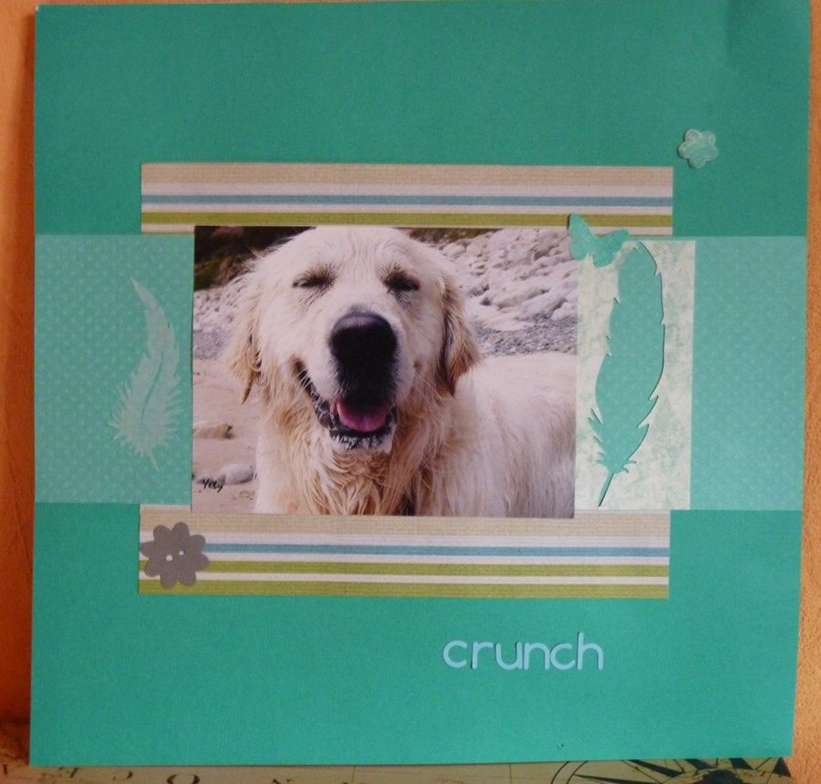 Page: Crunch