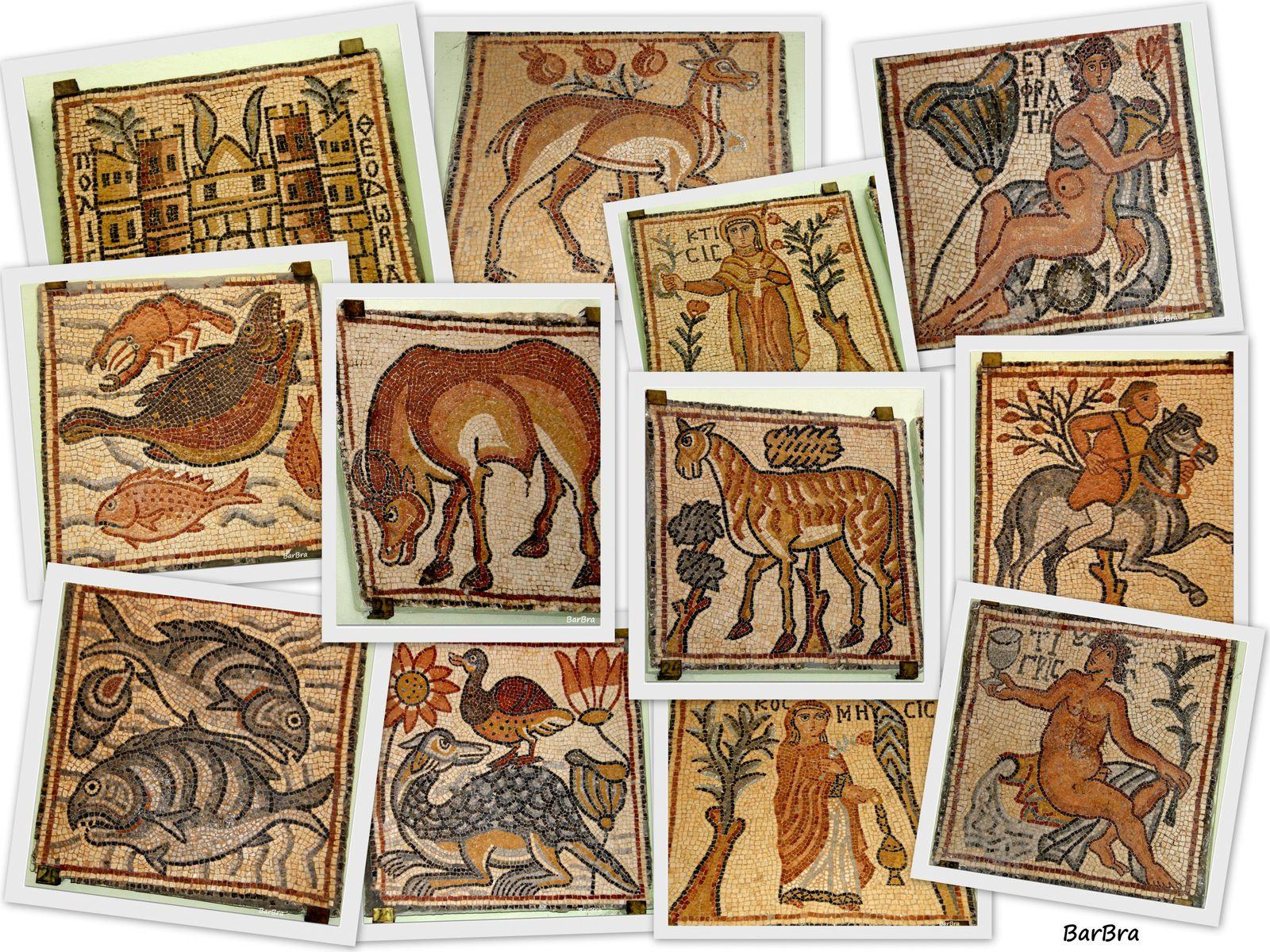 e qui ammirare i 50 pannelli musivi del pavimento, opera di artisti del VI secolo d.C. ...  costantinopolitani o alessandrini
