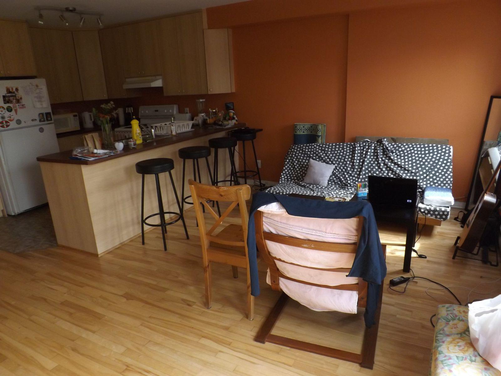 nouvel appartement chti canadien. Black Bedroom Furniture Sets. Home Design Ideas