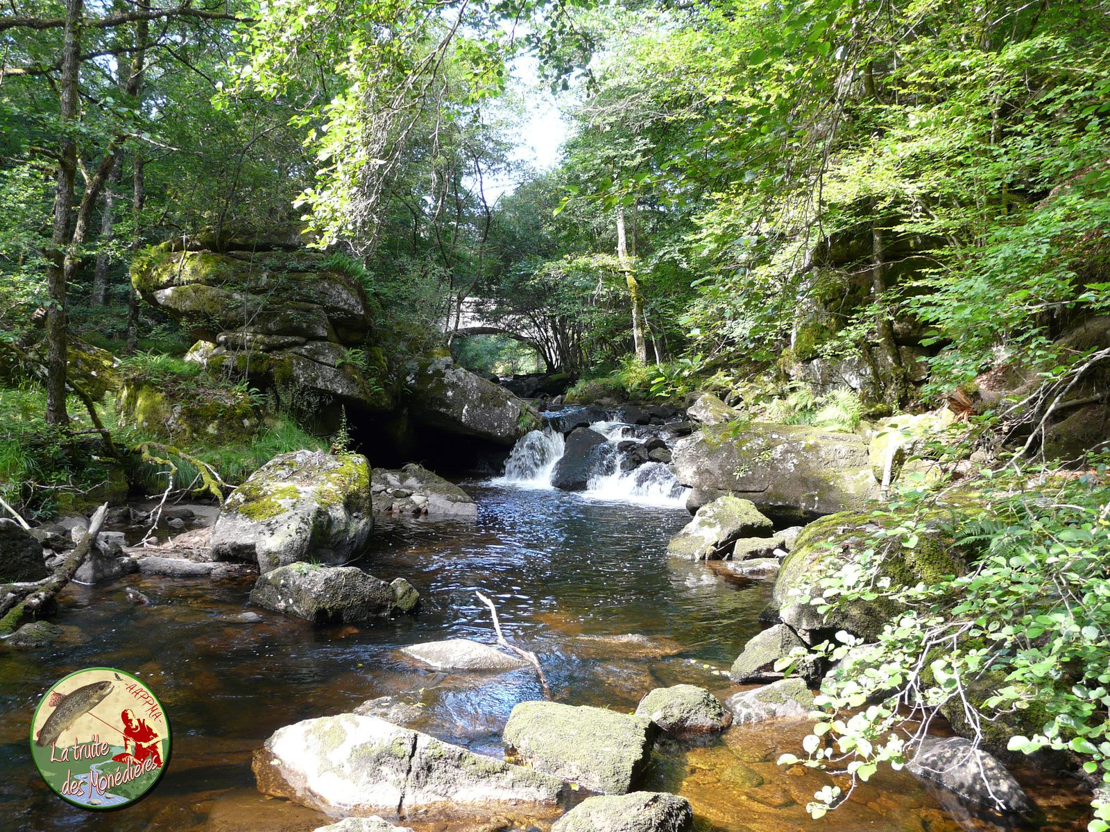 Que c'est beau ces ruisseaux corréziens...on s'croirait presque dans le Morvan!!!!.....Alors, Enjoy!!!!