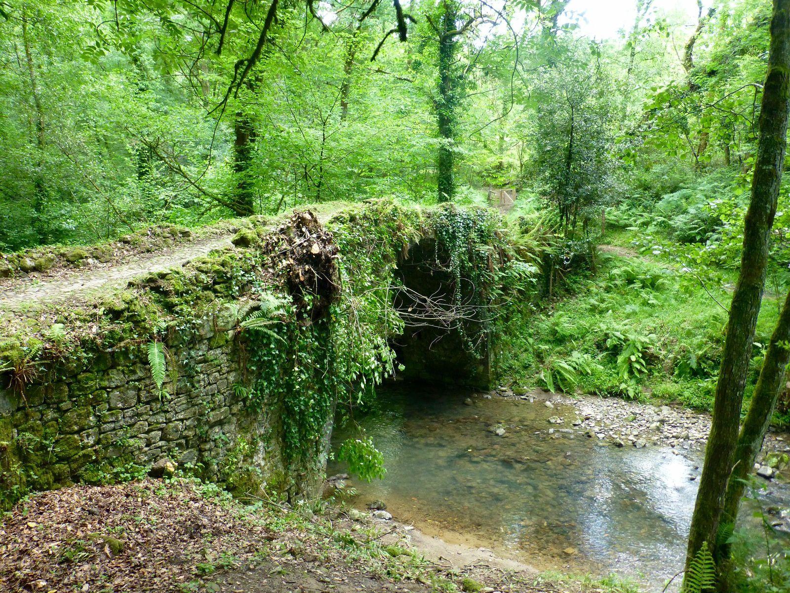 Une bien belle journée qui nous a laissé le temps de regarder la nature...et un vieux pont du XVI siècle.
