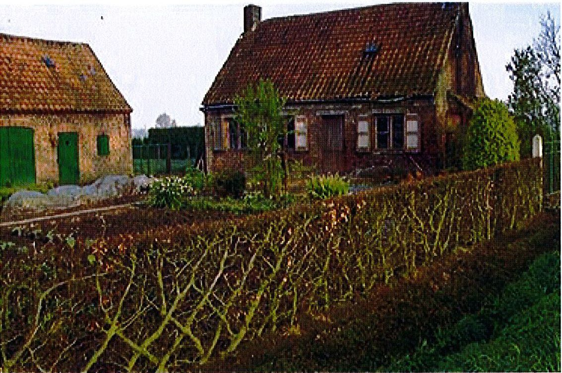 Haie à Oostkamp (Belgique) - source: Photographie Arnout Zwaenepoel in Invataris van traditionele hagen (2006) - WVI