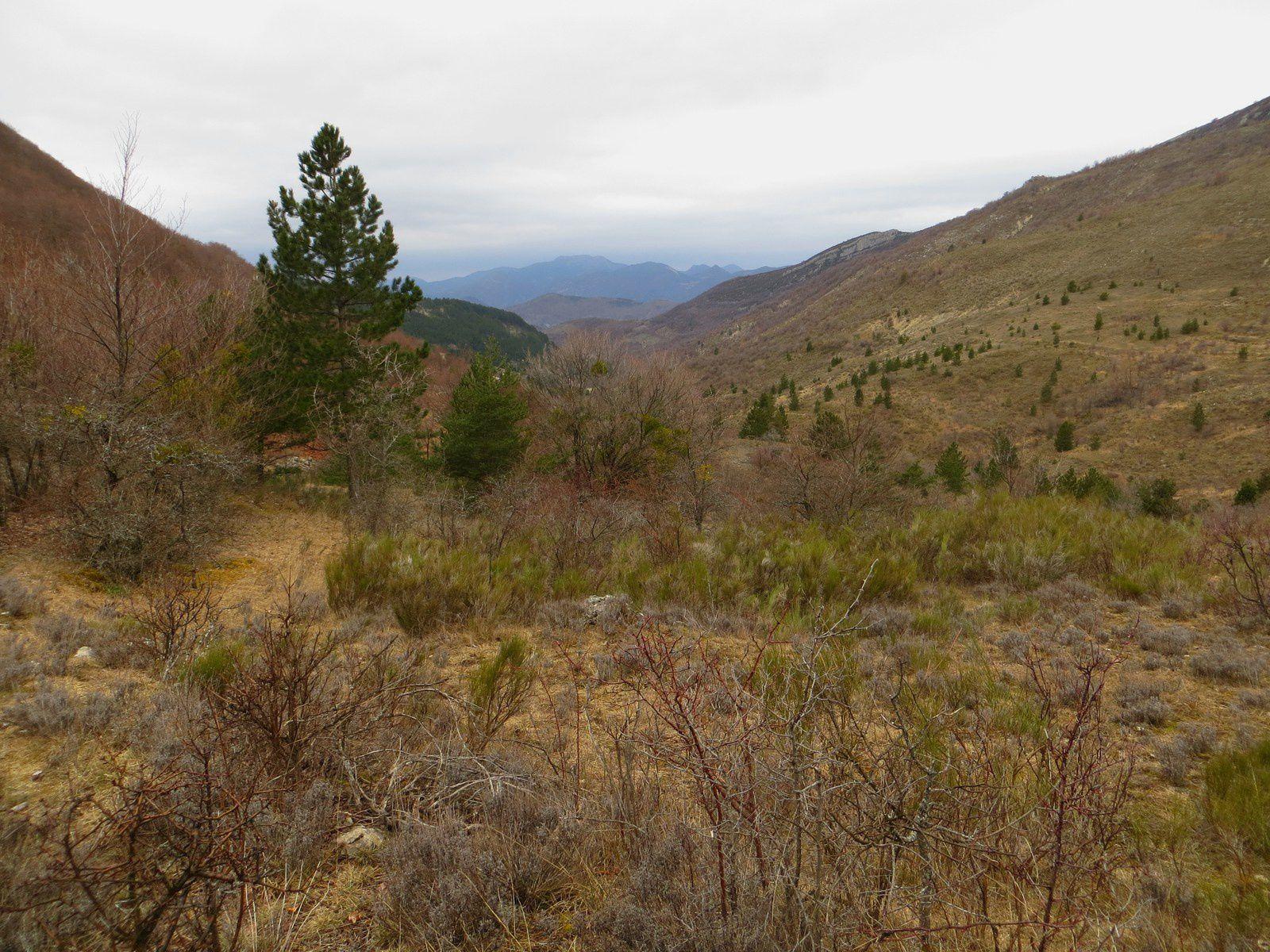 Lundi 27 : au départ de Mévouillon, ascension pour atteindre le col de BUC , avec  un panorama encore exceptionnel  sur les sommets environnants