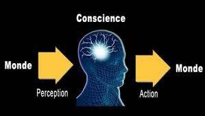 Processus décisionnel et émotions