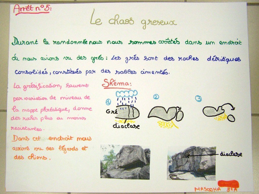 Sortie 5A Fontainebleau + expo
