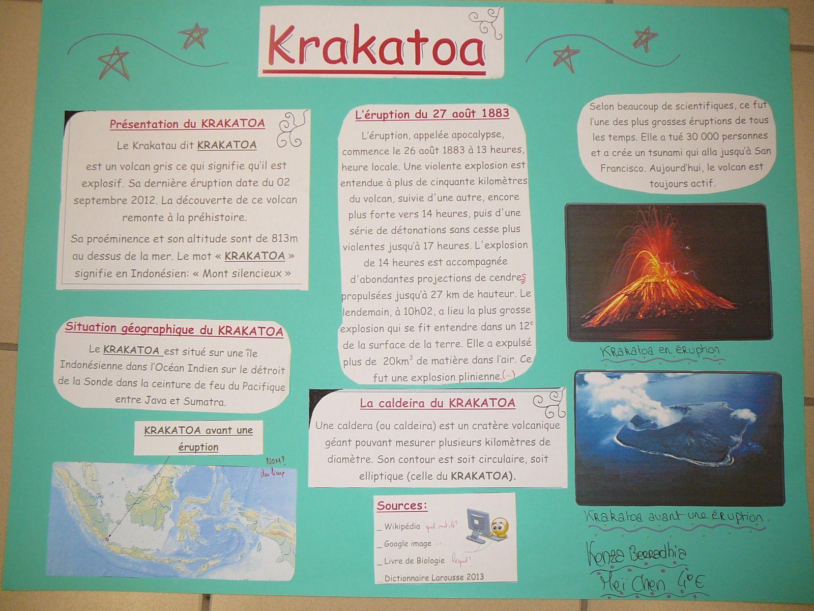 Expo volcans 2014 4E
