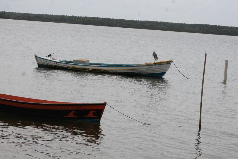 cote nord ouest du lagao do conceiçao