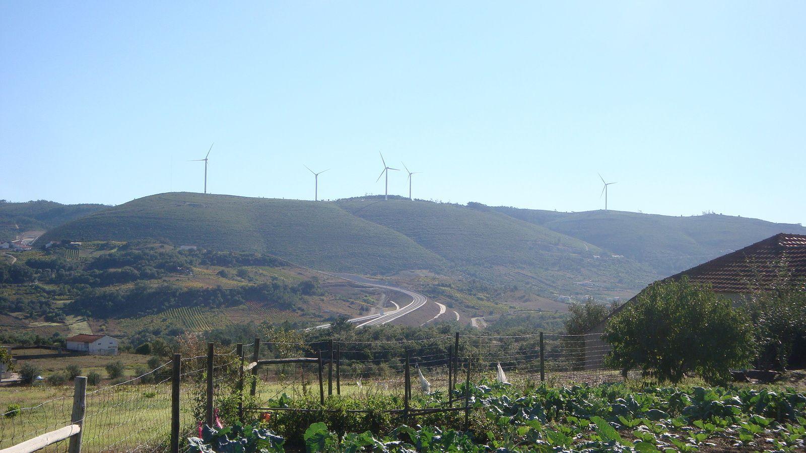 L'investissement dans les énergies renouvelables, l'un des rares succès du Portugal moderne. Au premier trimestre 2013 par exemple, près de 70% de l'électricité consommée dans le pays a été d'origine renouvelable – un chiffre qui dépend aussi de la force des vents. Le Portugal est l'un des rares pays au monde dont plus de 60% de la production électrique est d'origine renouvelable. Les efforts en la matière sont récents mais significatifs : entre 2005 et 2010, le Portugal a fait passer sa part d'énergie d'origine renouvelable de 17% à 45%, en multipliant par 7 sa production d'énergie éolienne, tout en développant beaucoup l'hydro-électricité, l'énergie houlomotrice et le solaire.