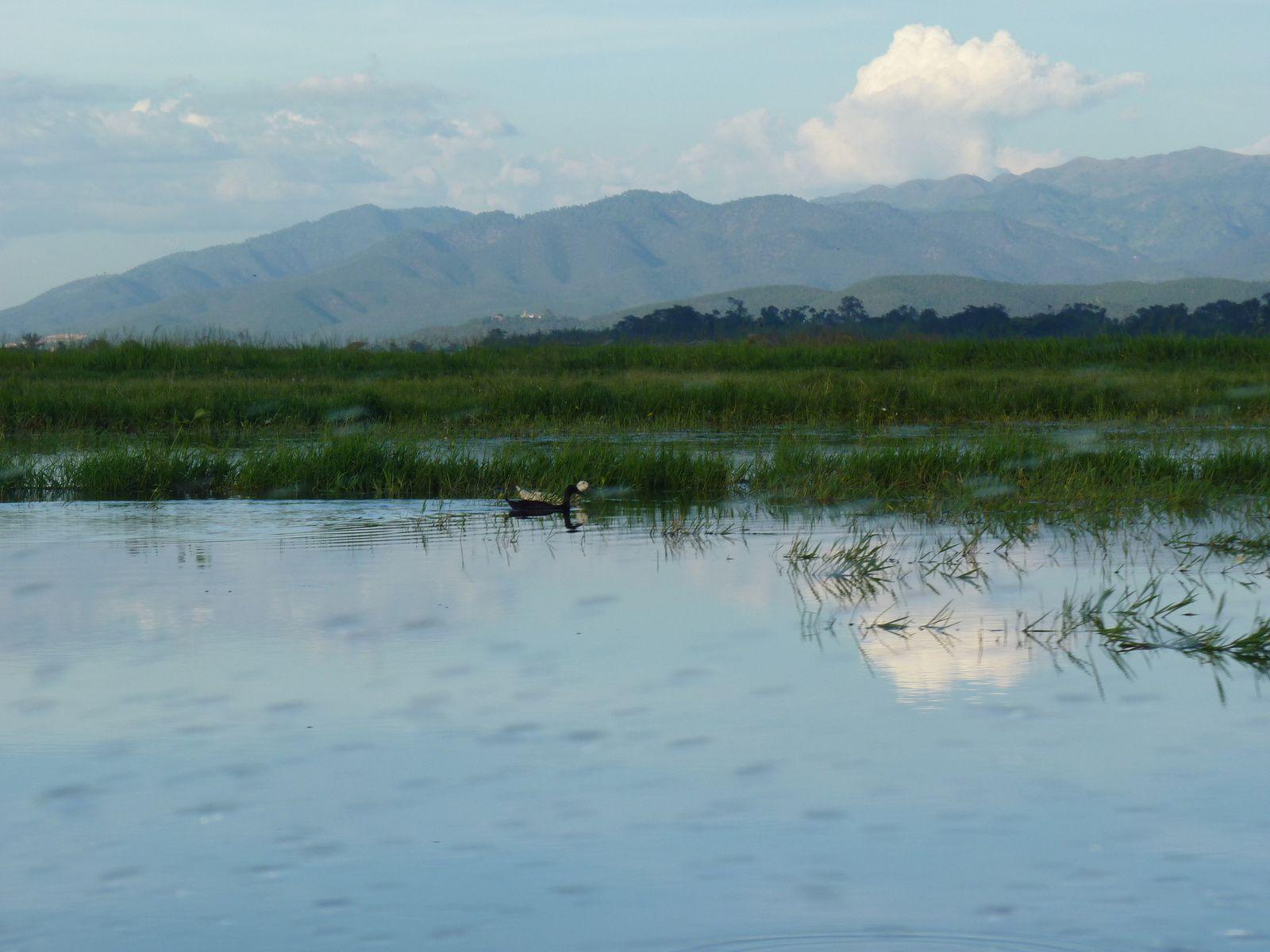 lac Inlé jour 2 - pirogue jusqu'à Sagar
