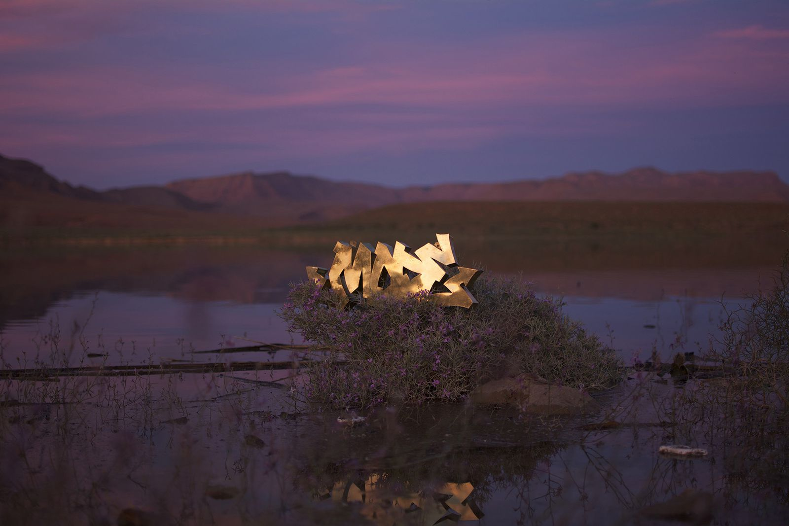 Quelques installations photographiques du Copper Graffiti #1.