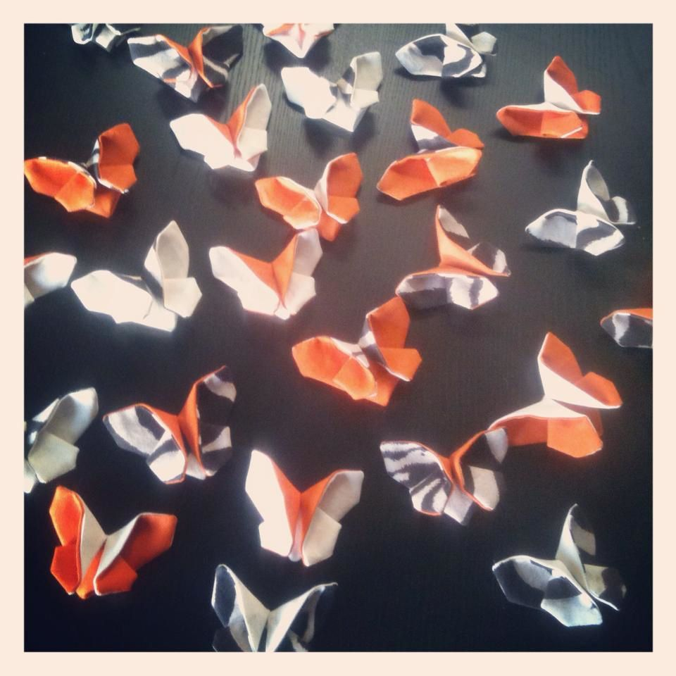 Mes papillons... Graou !