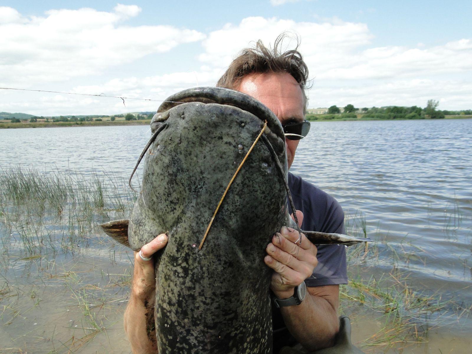 la fabuleuse histoire des fabuleux pêcheurs des fabuleux silures (3)