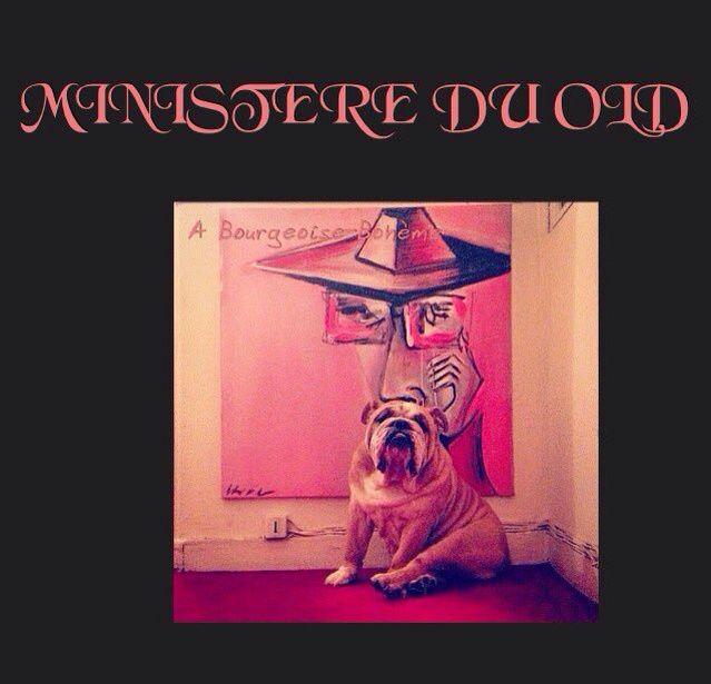 BOULEDOGUE ARTY #dog #pic