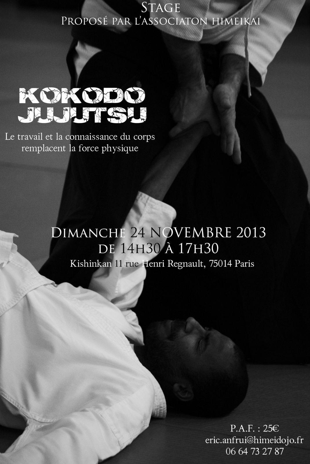 Stage de retour du Japon le dimanche 24 novembre 2013 à Paris