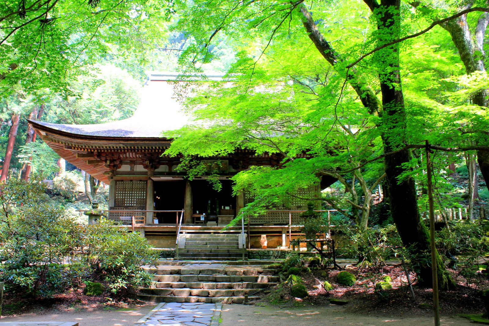 Les 700 marches du temple Murouji