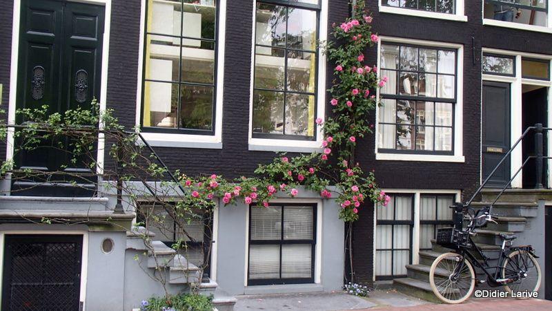 AMSTERDAM : Dans mon carnet de voyage...