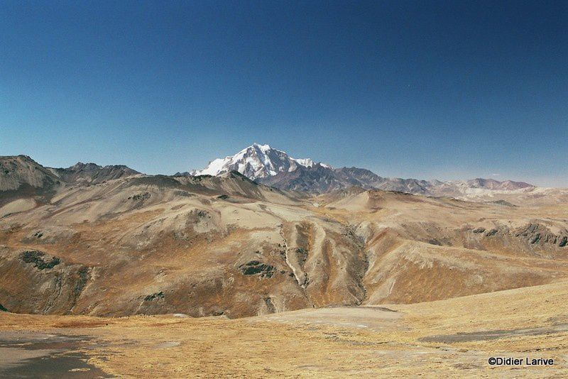 Bolivie : La Cordillère royale, un joyau d'altitude !