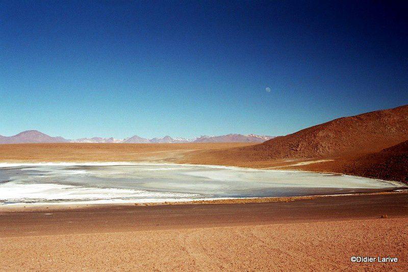 Laguna Colorada et ses eaux colorés à 4278 m : la coloration rouge provient des algues et du plancton qui se développent dans des eaux riches en minéraux.