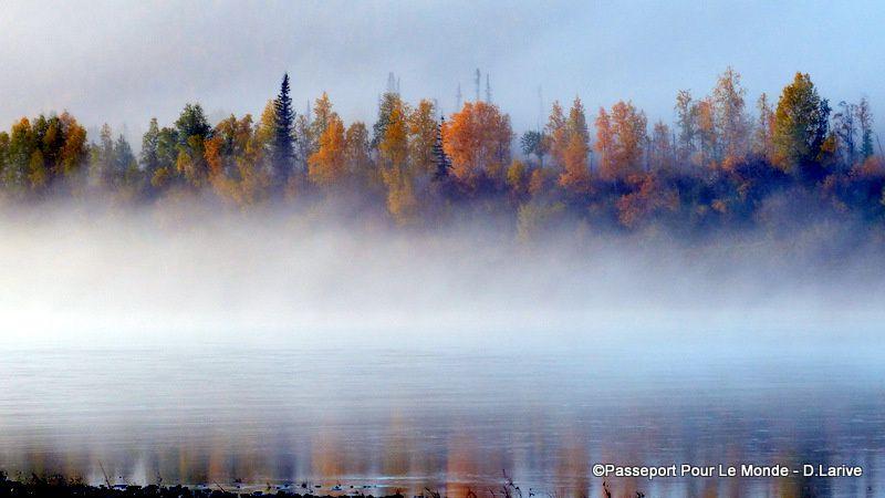 La brume du matin sur la Porcupine