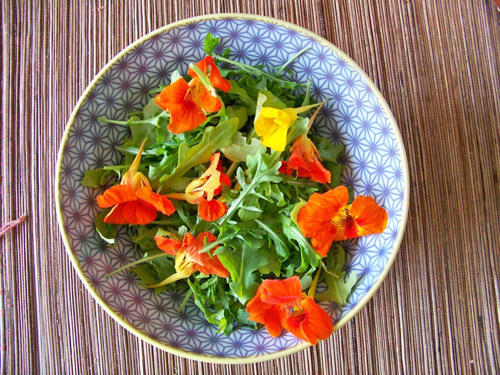 Salade de capucines